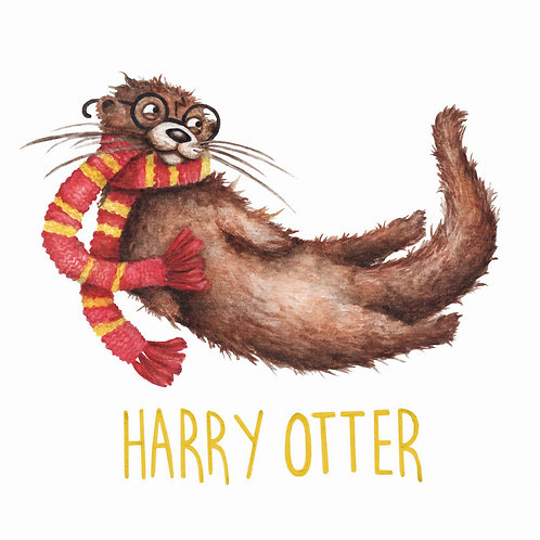 C75 - Harry Otter