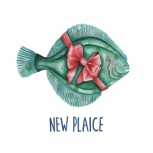 C10 - New Plaice