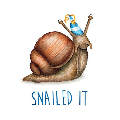 C41 - Snailed It