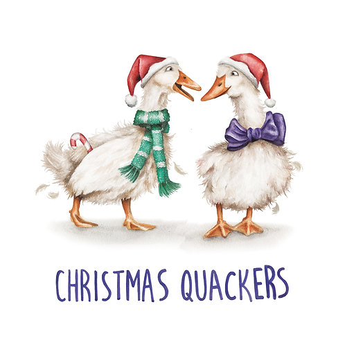 C29  - Christmas Quackers