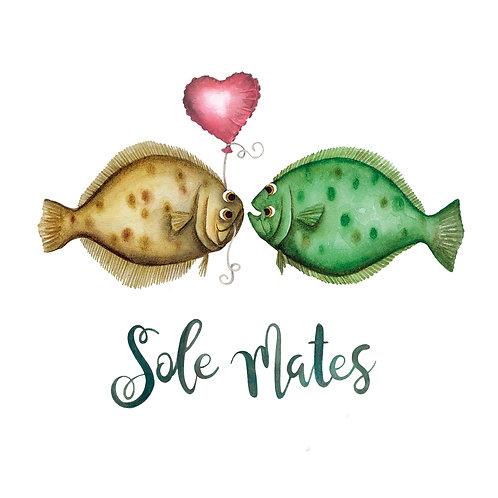 C19 - Sole Mates