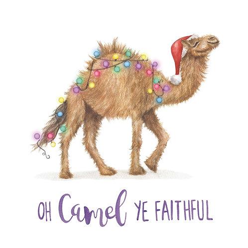 T35 - Camel Ye Faithful