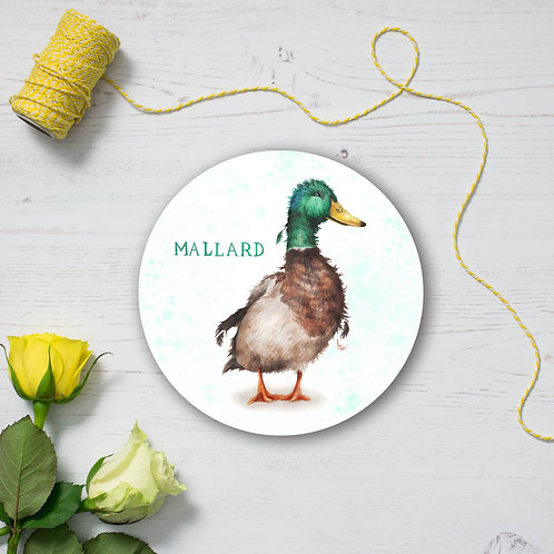 Mallard Coaster