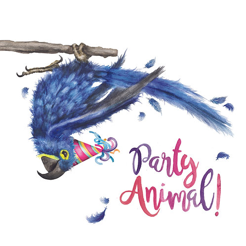 T40 - Party Animal