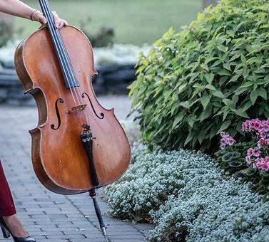 cello lesson.jpg
