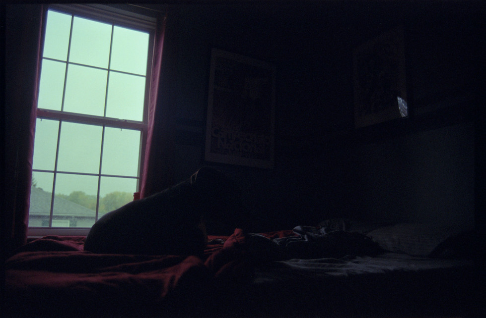 Logan on the Bed.jpg