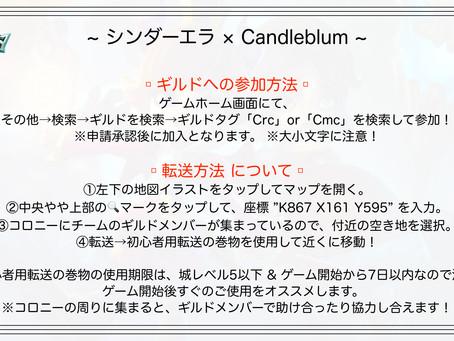 LORDS MOBILE 広告モデル争奪!「アイドル×コンセプトカフェ」コラボチャレンジにシンダーエラ参戦!