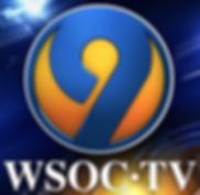 wsoctv-300x292.png