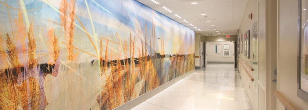 Protection murale PVC couloir