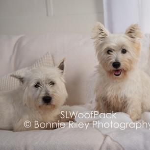 Boss and Lulu