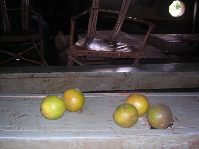 Chapter 11 and 16 - dusty green oranges
