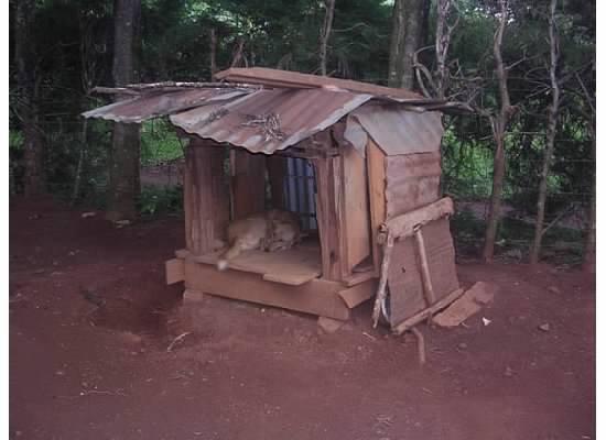 Chapter 26 - Jimmy_s doghouse