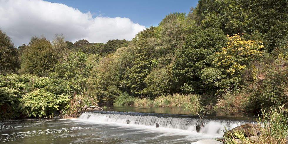Heritage Open Days - Crowley's Dam Guided Walk