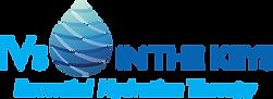 logo-ivs.png