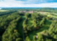 aerial editted web.jpg