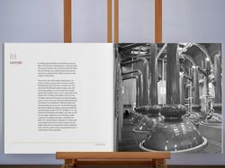Guidebook 5.jpg