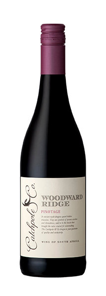 Catchpole & Co. 2019 Pinotage