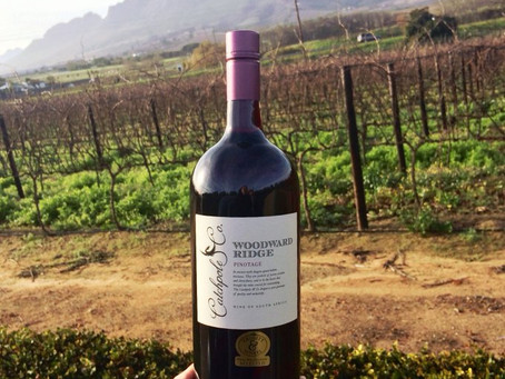 The perfect blend of passion and expertise: David Woodward on Woodward Wines Catchpole & Co Pinotage