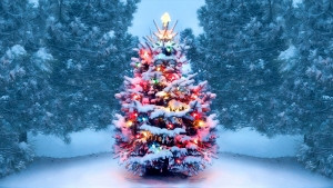 Christmas Letter to our service users
