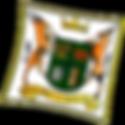 Springboks Logo_PNG.png