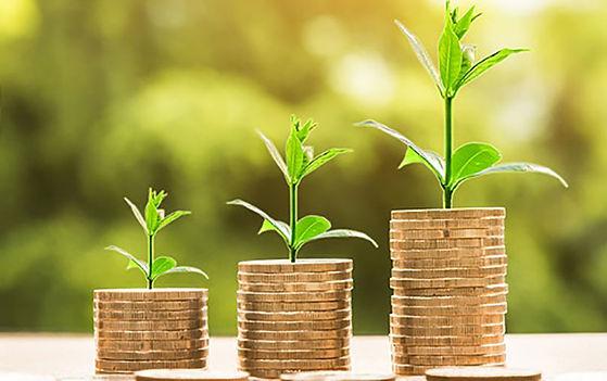 Seedfunding.jpg
