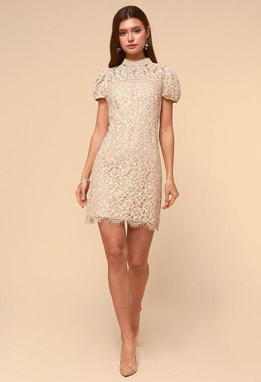 Kaia Sheath Dress