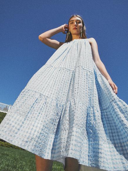Savannah Dress 1.png