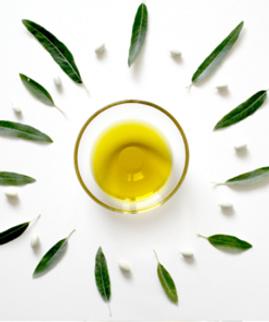 olive oil_01.png