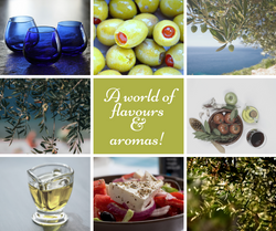 the world of olive oil