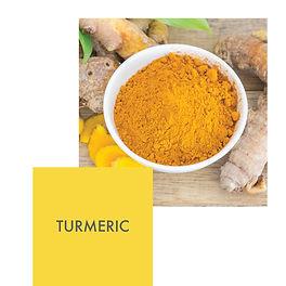 turmeric 6.jpg