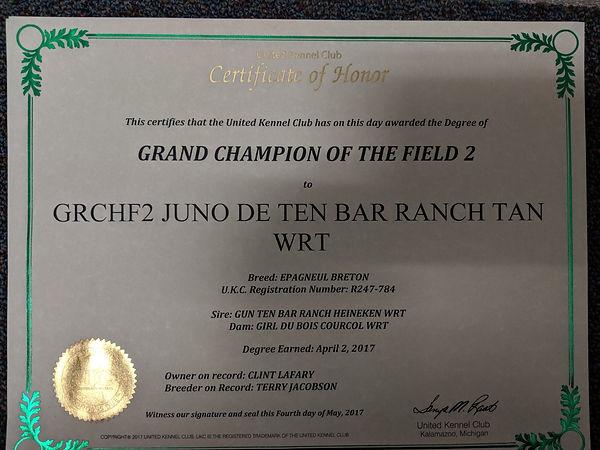 Juno 2xgrchf.jpg