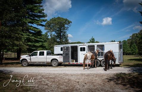 Truck and horses.jpg