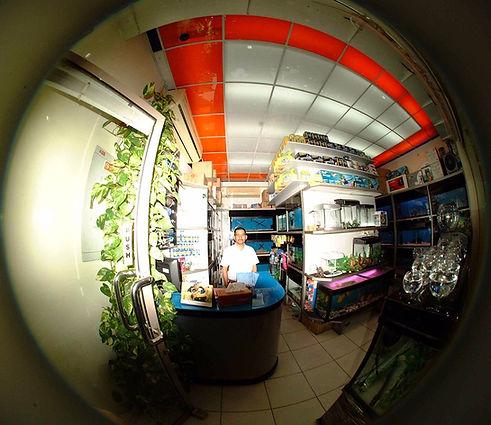 Aquarium Suppliers