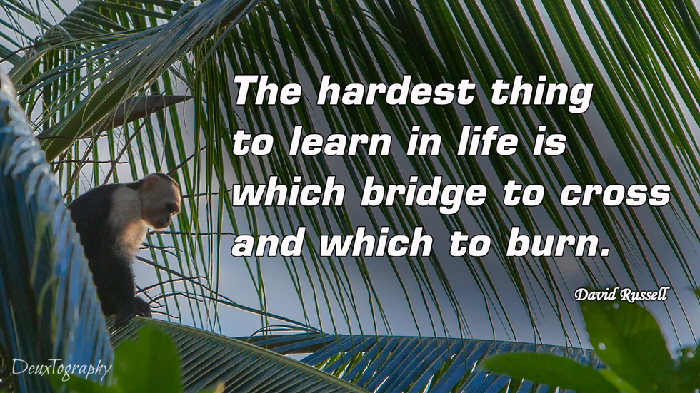 Bridges David Russell.png