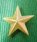 Green Star.jpg