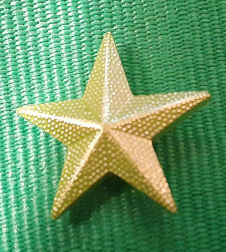 Green Youth Star: for submitting a youth membership application to NSDOAF.