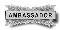 Ambassador Pin.png
