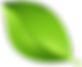 Green_Leaf_Transparent_PNG_Clip_Art_Imag