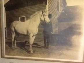 Andrew Jackson Weir and his horse Regal.