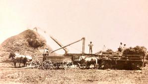 Bev Schuele McBride ancestors in Nebrask