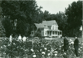 Rosenfield Farm  Nebraska.jpg