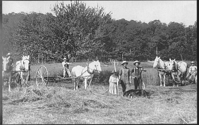 farmers 1800s.jpg