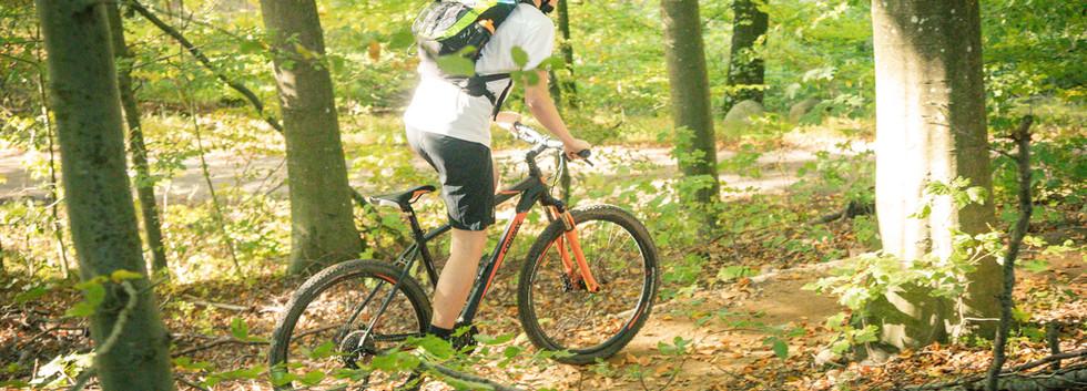 bikerent_121018_026.jpg