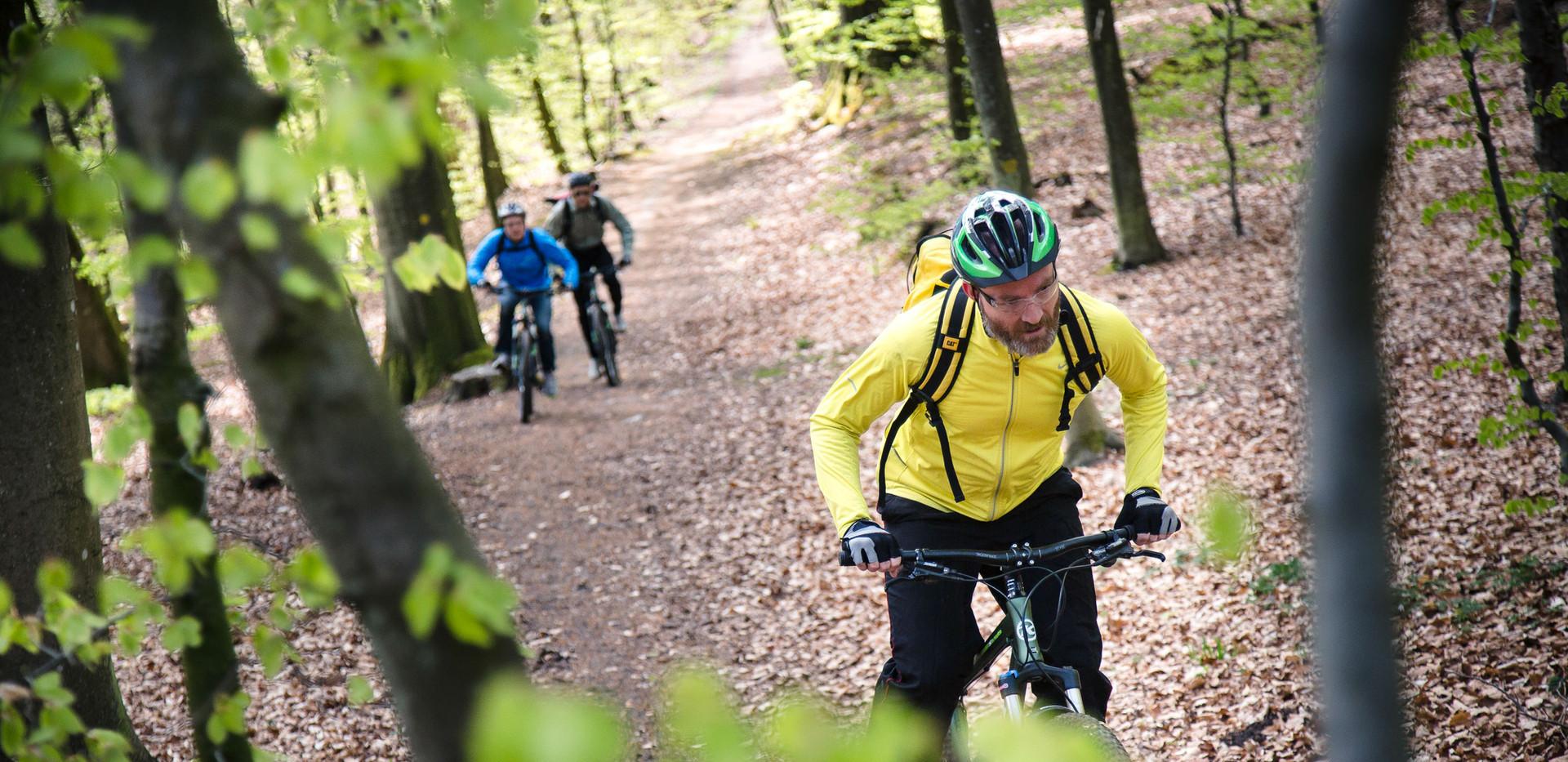 bikerent_maj_2015_051.jpg