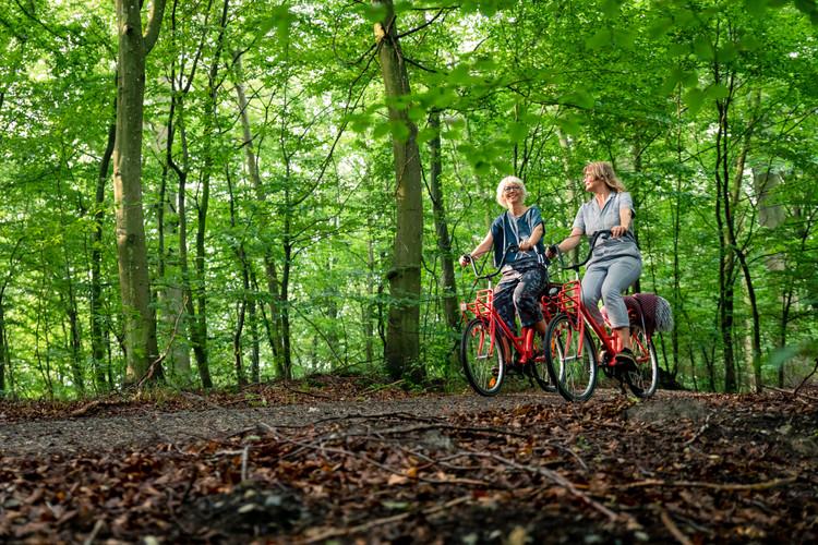 bikerent_hængekøje_014.jpg