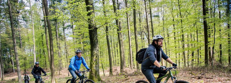 bikerent_maj_2015_017.jpg