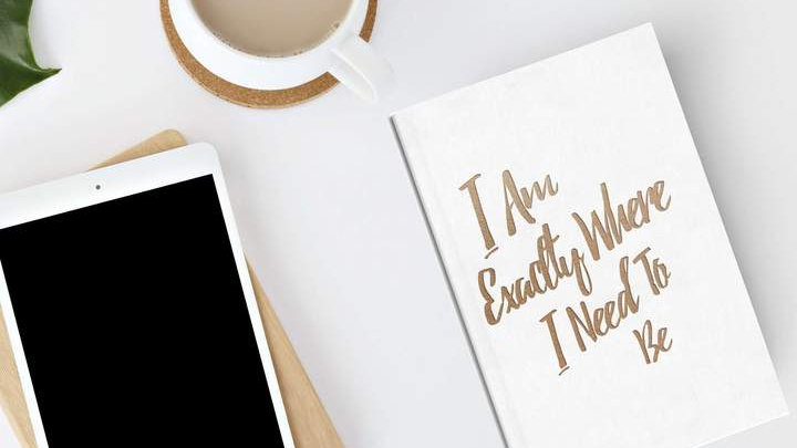 Please Notes Guided Gratitude Journal