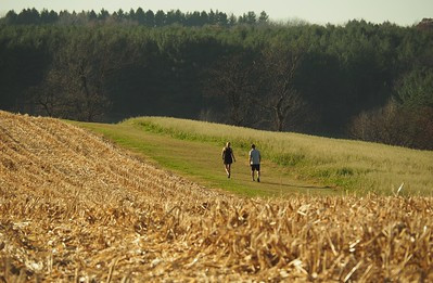Harvested field in Wisconsin by humbletree