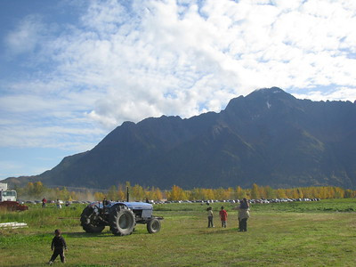 Farm in Alaska showing a cabless Ford tractor.  Image by Sarah Hurst