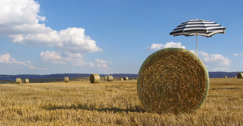 Round hay bales in field, one has an umbrella in it.  Image by Pierre Marcel